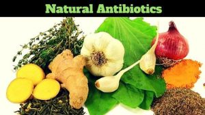 Natural antibiotics to protect you from infection